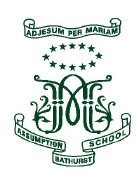The Assumption School